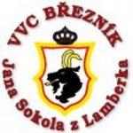 vvcbreznik_logo